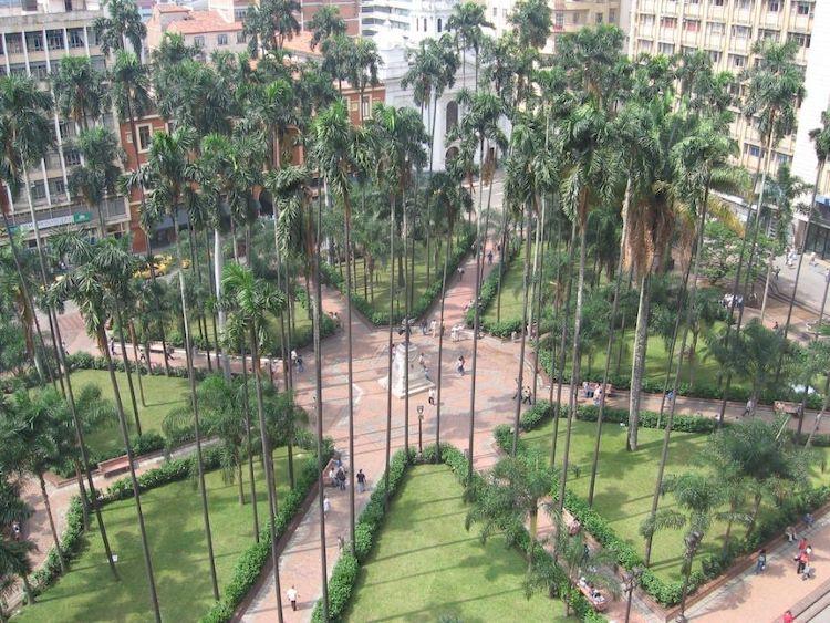 Place Caicedo Cali